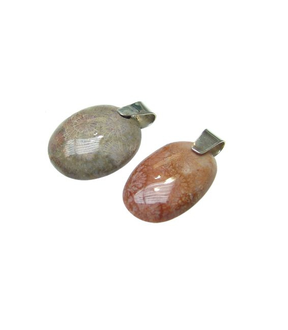Colgante medallón coral fósil plata (3 a 5 ud)