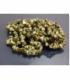 PULSERA CHIP RIOLITA -10ud-