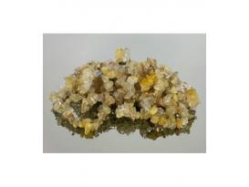 Pulsera chip cuarzo rutilado (10ud)